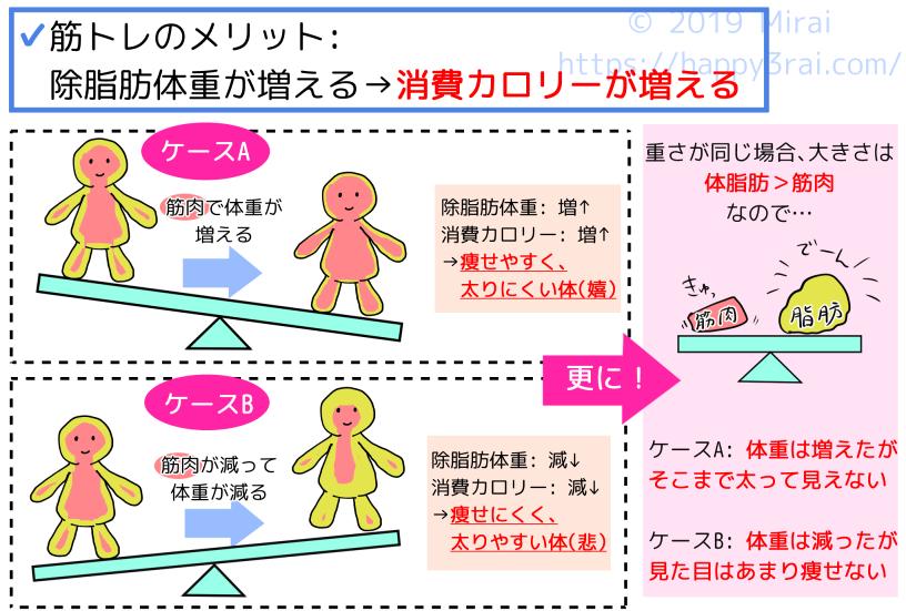 1-1除脂肪体重と消費カロリー