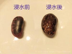 花豆の浸水前と浸水後2