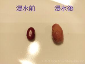 金時豆の浸水前と浸水後2